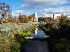 Autumn reflections in the Grand Parc de St Ouen