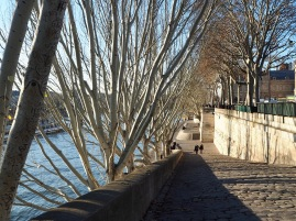 Parisian stone and poplar trees lead the eye to two small figures - December 2018