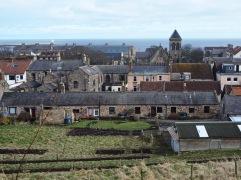 March - the garden taking shape