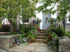 A flowery welcome - Berwick - August