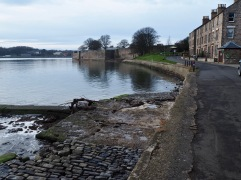 Looking away from the pier, the curve of the river leads your eye to Fisher's Fort