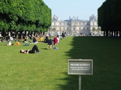 Sitting on the grass permitted - Jardin du Luxembourg - May