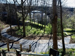Beyond the road and rail bridges the footpath climbs through young woodland to a playing field over the culverted river