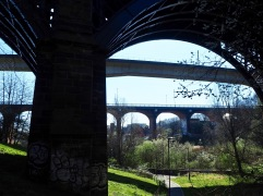 When the railway was built the river was culverted underground from Jesmond Vale - it emerges just below the viaduct
