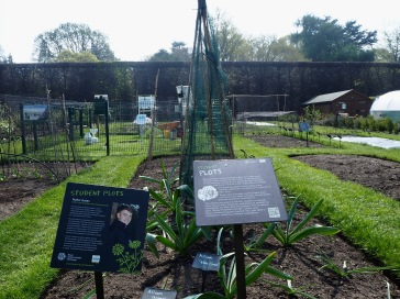 student and demonstration plots at Edinburgh Botanics - illustration