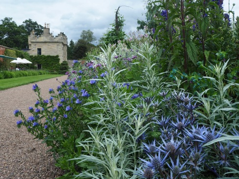 From the garden entrance a long border in restful shades of blue and white leads off to your left, towards the head gardener's cottage