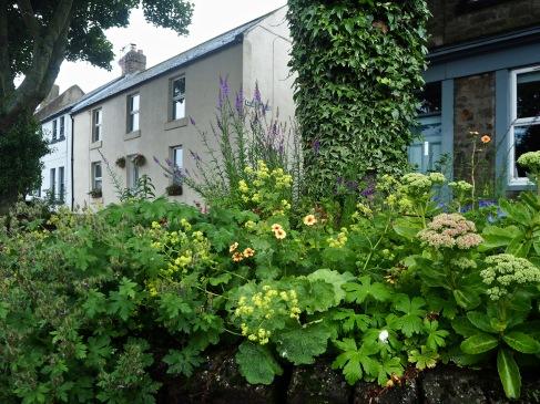 A subtle mix of hardy perennials...
