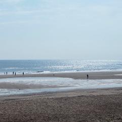 July - shining sea