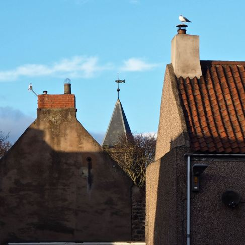 St Boisil's church is crowned by a salmon weather vane - Tweedmouth - December 2018