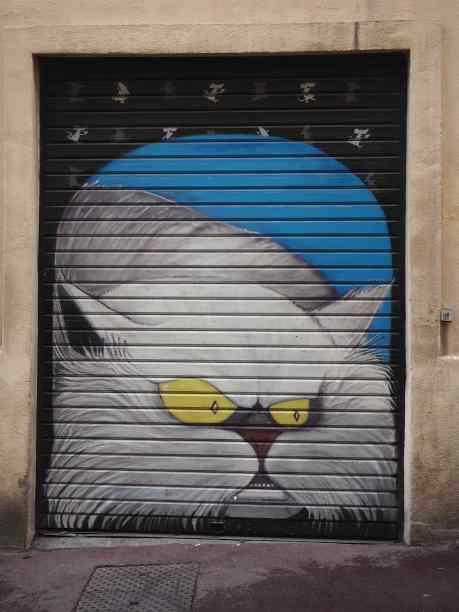 Marseille street cat - June 2018